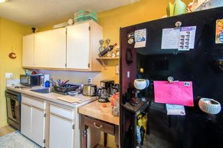 Photo 11: 244 1435 7 Avenue NW in Calgary: Hillhurst Apartment for sale : MLS®# A1129268