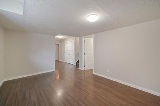 Photo 19: 162 REDSTONE Drive in Calgary: Redstone Semi Detached for sale : MLS®# A1102876
