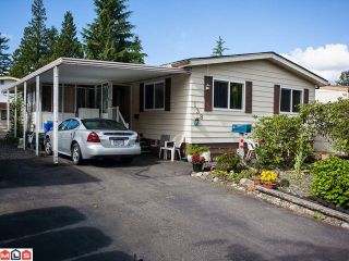 """Photo 1: 138 3665 244TH Street in Langley: Otter District Manufactured Home for sale in """"LANGLEY GROVE ESTATES"""" : MLS®# F1217824"""