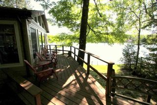 Photo 7: 95 Shadow Lake 2 Road in Kawartha Lakes: Rural Somerville House (Bungalow) for sale : MLS®# X4798581