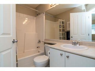 Photo 14: 10268 242B Street in Maple Ridge: Albion House for sale : MLS®# R2028369