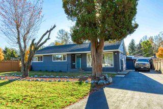 """Photo 1: 13750 111 Avenue in Surrey: Bolivar Heights House for sale in """"Bolivar heights"""" (North Surrey)  : MLS®# R2514231"""