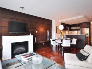 "Photo 4: 205 1690 W 8TH Avenue in Vancouver: Fairview VW Condo for sale in ""MUSEE"" (Vancouver West)  : MLS®# V817853"