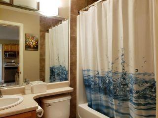 Photo 11: 308 5005 165 Avenue in Edmonton: Zone 03 Condo for sale : MLS®# E4228742