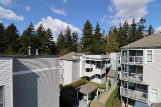 "Main Photo: 46 7345 SANDBORNE Avenue in Burnaby: South Slope Townhouse for sale in ""Sandborne Woods"" (Burnaby South)  : MLS®# R2559406"