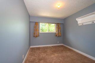 Photo 22: 20820 STONEY Avenue in Maple Ridge: Southwest Maple Ridge House for sale : MLS®# R2471486