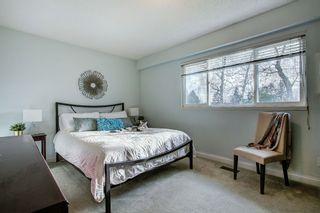 Photo 9: 5358 45 Avenue in Delta: Delta Manor House for sale (Ladner)  : MLS®# R2440894