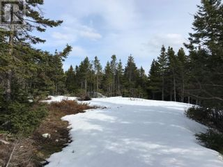 Photo 1: 0 New World Island Forestry Access Road in Summerford: Vacant Land for sale : MLS®# 1229207