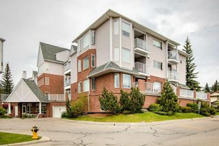 Photo 29: 1111 HAWKSBROW Point NW in Calgary: Hawkwood Apartment for sale : MLS®# C4248421