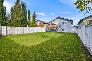 Photo 19: 4333 58 Street: Red Deer Detached for sale : MLS®# A1149215