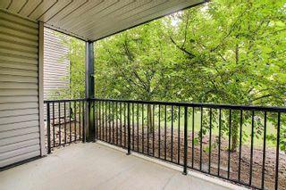 Photo 41: 115 14808 125 Street in Edmonton: Zone 27 Condo for sale : MLS®# E4247678