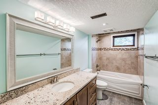 Photo 43: 204 Dalgleish Bay NW in Calgary: Dalhousie Detached for sale : MLS®# A1110304