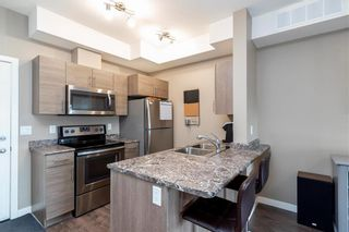 Photo 11: 1204 65 Fiorentino Street in Winnipeg: Starlite Village Condominium for sale (3K)  : MLS®# 202011608