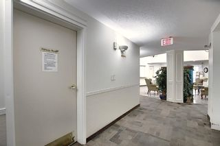Photo 27: 3225 6818 Pinecliff Grove NE in Calgary: Pineridge Apartment for sale : MLS®# A1053438