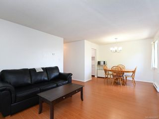 Photo 5: 205 2610 Graham St in Victoria: Vi Hillside Condo for sale : MLS®# 842401