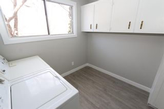 Photo 24: 547 Templeby Place NE in Calgary: Temple Detached for sale : MLS®# A1071164