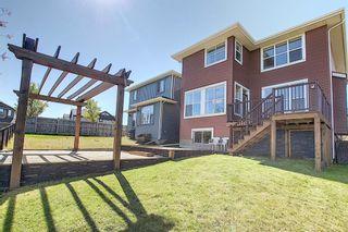 Photo 44: 287 AUBURN GLEN Drive SE in Calgary: Auburn Bay Detached for sale : MLS®# A1032601