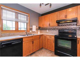 Photo 15: 124 INGLEWOOD Cove SE in Calgary: Inglewood House for sale : MLS®# C4038864