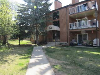 Photo 1: 301, 24 Alpine Place in St. Albert: Condo for rent