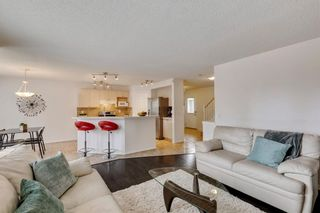 Photo 18: 18 Copperfield Crescent SE in Calgary: Copperfield Detached for sale : MLS®# A1141643
