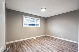 Photo 17: 820 Avonlea Place SE in Calgary: Acadia Detached for sale : MLS®# A1153045