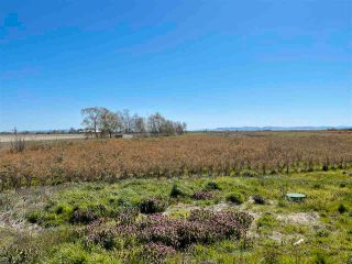 Photo 4: 2170 WESTHAM ISLAND Road in Delta: Westham Island Land Commercial for sale (Ladner)  : MLS®# C8037896