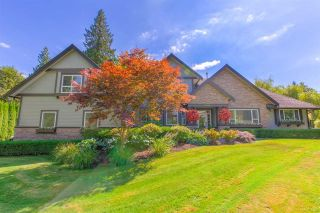 "Photo 1: 24170 113 Avenue in Maple Ridge: Cottonwood MR House for sale in ""SIEGLE CREEK ESTATES"" : MLS®# R2495353"