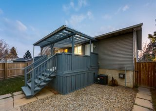 Photo 44: 205 RUNDLESON Place NE in Calgary: Rundle Detached for sale : MLS®# A1153804