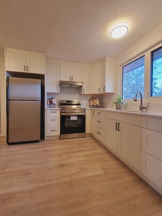Photo 20: 10 Radcliffe Crescent SE in Calgary: Albert Park/Radisson Heights Detached for sale : MLS®# A1121871