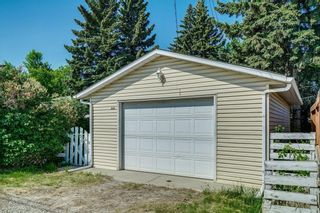 Photo 34: 5920 BUCKTHORN Road NW in Calgary: Thorncliffe Detached for sale : MLS®# C4172366