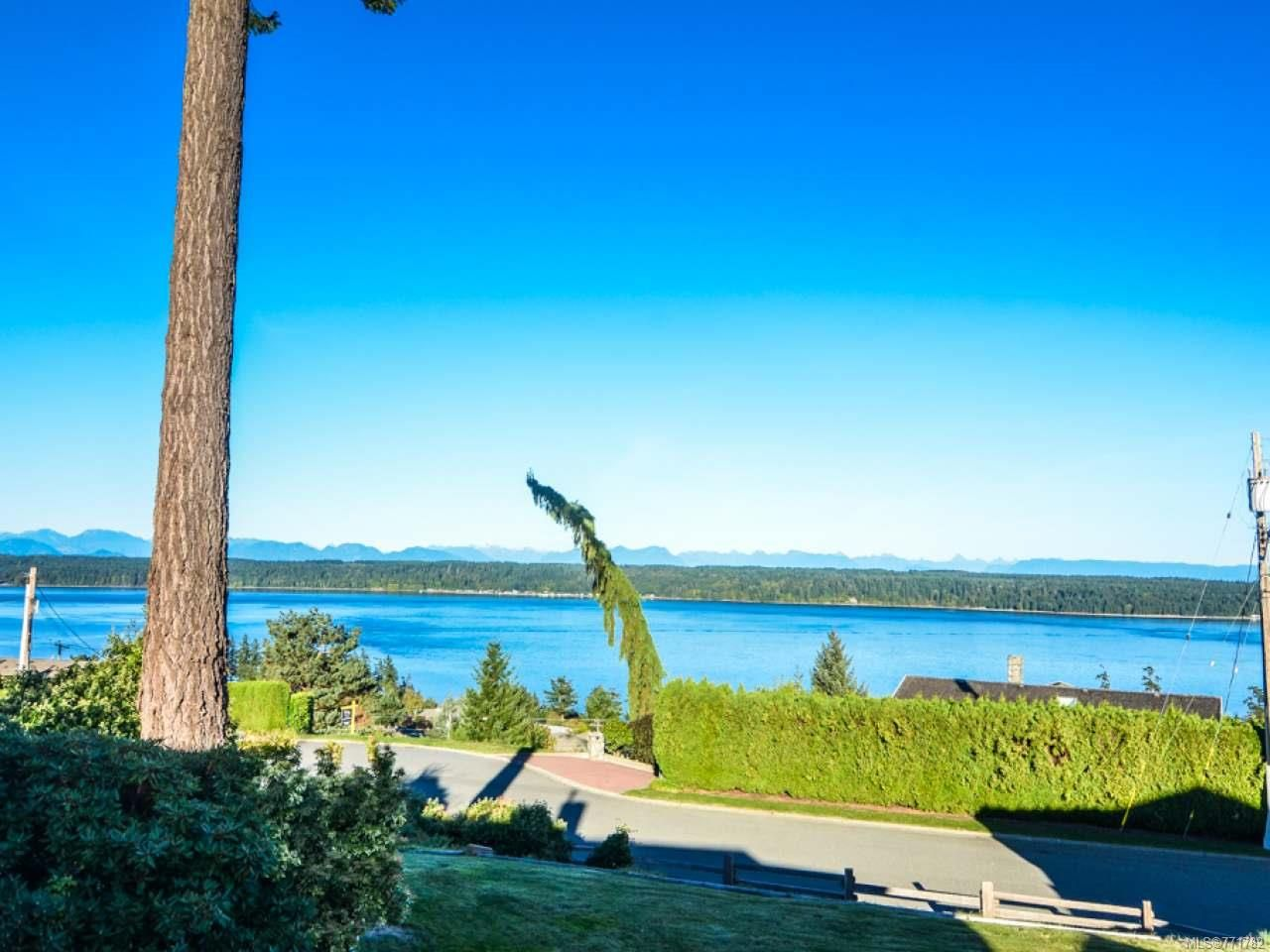 Photo 6: Photos: 451 S McLean St in CAMPBELL RIVER: CR Campbell River Central House for sale (Campbell River)  : MLS®# 771782