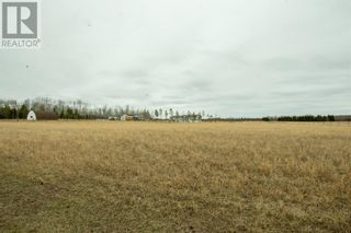Photo 38: 70025 Range Road 65A in Grovedale: House for sale : MLS®# A1101687