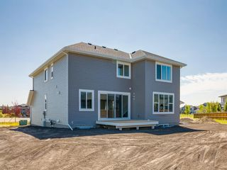 Photo 48: 159 CANOE Crescent SW: Airdrie Detached for sale : MLS®# A1019943