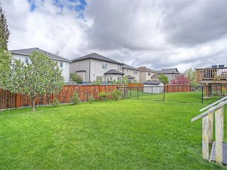Photo 17: 40 CITADEL RIDGE Close NW in Calgary: Citadel House for sale : MLS®# C4119183