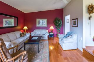Photo 43: 4365 Munster Rd in : CV Courtenay West House for sale (Comox Valley)  : MLS®# 872010
