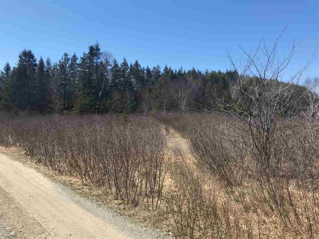 Photo 7: Photos: 11574 Highway 7 in Lake Charlotte: 35-Halifax County East Vacant Land for sale (Halifax-Dartmouth)  : MLS®# 201927372