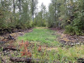 Photo 17: 292 Terry Road, in Enderby: Vacant Land for sale : MLS®# 10239679