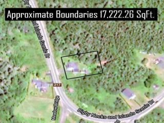 Photo 4: 3623 HIGHWAY 217 in East Ferry: 401-Digby County Residential for sale (Annapolis Valley)  : MLS®# 202119912