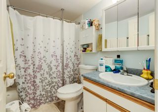 Photo 25: 121 Covehaven View NE in Calgary: Coventry Hills Detached for sale : MLS®# A1115933