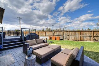 Photo 43: 420 Templeby Place NE in Calgary: Temple Detached for sale : MLS®# A1107183