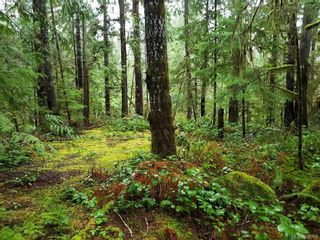 Photo 3: LOT 8 MACMILLAN Dr in : PA Sproat Lake Land for sale (Port Alberni)  : MLS®# 868768