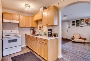 Photo 37: 26 Saddlemont Way NE in Calgary: Saddle Ridge Detached for sale : MLS®# A1103479