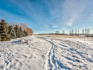 Photo 39: 333072 Range Road 263: Rural Kneehill County Detached for sale : MLS®# A1056668