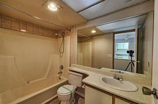 Photo 9: 114 335 GARRY Crescent NE in Calgary: Greenview Condo for sale : MLS®# C4161092