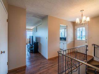 Photo 59: 3140 ROBBINS RANGE ROAD in Kamloops: Barnhartvale House for sale : MLS®# 163482