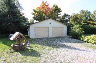Photo 10: 61 Robinson Avenue in Kawartha Lakes: Rural Eldon House (Bungalow) for sale : MLS®# X3624976