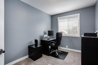 Photo 11: 100 Martinwood Road NE in Calgary: Martindale Detached for sale : MLS®# A1071596