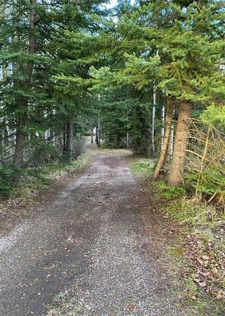 Photo 2: 350084 TWP 35-0: Rural Clearwater County Land for sale : MLS®# C4297425