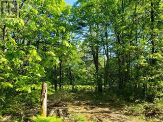 Photo 14: 8801 SEVERN RIVER in Orillia: Vacant Land for sale : MLS®# 40120545