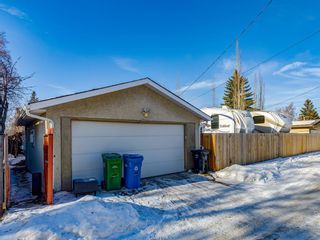 Photo 47: 724 Matador Crescent NE in Calgary: Mayland Heights Detached for sale : MLS®# A1065879